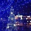 JR長岡京駅前クリスマスイルミネーション02