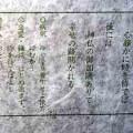 2013年初詣おみくじ