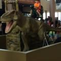 ヒューストン自然科学博物館